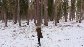Att kasta för liten flicka sörjer kottar till fågelhus lager videofilmer