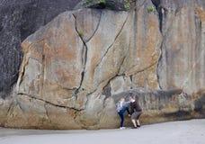 Att klättra elefanten vaggar Royaltyfria Bilder