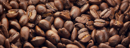 att komma för kaffe låter vara planterar ut fröstemen Fotografering för Bildbyråer