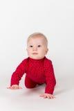 Att krypa behandla som ett barn i rött följe på vitbakgrund Royaltyfri Foto