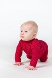 Att krypa behandla som ett barn i rött följe på vitbakgrund Royaltyfri Bild