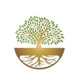 Att läka rotar trädbladsymbolen royaltyfri bild
