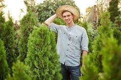 Att le grabbträdgårdsmästaren i en sugrörhatt står i plantskolan med många thujas på en varm solig dag royaltyfria bilder