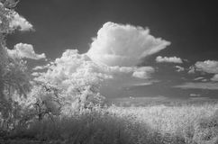 Att närma sig för åskväder Arkivfoto