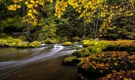 Att rusa floden mellan mossigt vaggar i hösten, Bayern, Tyskland, Europa Royaltyfri Foto