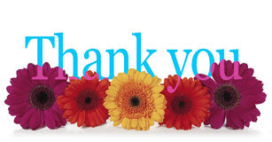 Att säga tackar dig med blommor arkivfoto