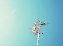 Att se upp på kan polen och flygplan, fotofilter Fotografering för Bildbyråer