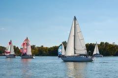 Att segla seglar på Donet River nära Rostov-On-Don arkivbild