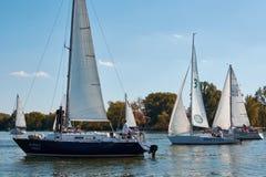 Att segla seglar på Donet River nära Rostov-On-Don fotografering för bildbyråer