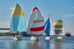 Att segla seglar på Donet River nära Rostov-On-Don royaltyfri foto