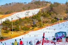 Att skida på Vivaldi parkerar Ski Resort Arkivbilder