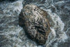 Att skumma vatten av bergfloden flödar snabbt runt om stort vaggar i floden Royaltyfri Bild