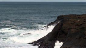 Att slå för vågor vaggar att flyga för kust och för Seagulls lager videofilmer