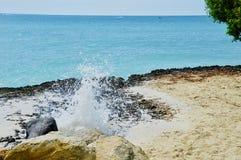Att slå vaggar på stranden royaltyfri fotografi