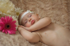 Att sova behandla som ett barn i blommorna Arkivbild