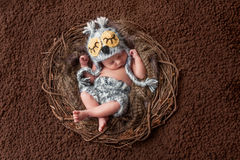 Att sova som är nyfött, behandla som ett barn pojken som bär en Owl Hat Arkivbilder