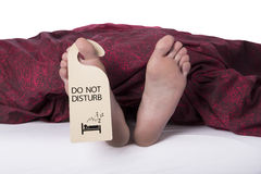 Att sova - stör inte Arkivbilder
