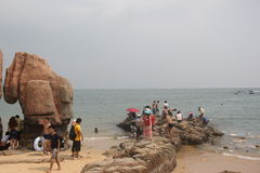 Att spela av besökarna i strand parkerar Fotografering för Bildbyråer