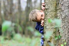 Att spionera upphetsar liten spion Småbarnskinn bak träd i för liten gissa lek pojkelek för skog Jag spionerar med mitt royaltyfri fotografi