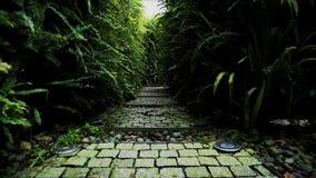 Att strosa inom labyrintträdgård parkerar i en solig dag