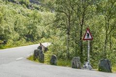 Att varna för fiska med drag i på Trollstigen i Norge Royaltyfri Foto