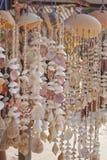 Attaccatura delle conchiglie Fotografie Stock Libere da Diritti