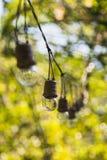 Attaccatura delle lampadine Fotografia Stock Libera da Diritti