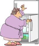 Attacchi il frigorifero Fotografie Stock