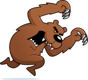 Attacco arrabbiato dell'orso Immagine Stock