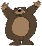Attacco dell'orso Immagine Stock