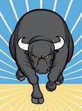 Attacco di Bull Fotografia Stock