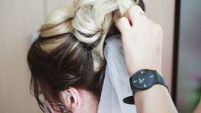 Attach a veil to the bride`s hair stock video footage