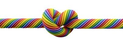 Attachez le mariage homosexuel de noeud photographie stock libre de droits
