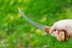 Attack with cossack saber Royalty Free Stock Image