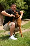 Attacked. A man being attacked by a boxer dog, slight motion blur in face to show movement in the attack stock photography