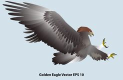 Attacking golden eagle isolated on light blue background stock illustration