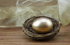 Attaining wealth seen in gold nest egg Royalty Free Stock Images