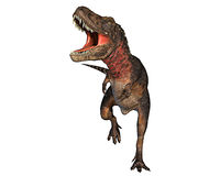 attaking δεινόσαυρος του Dino rex πο&u Απεικόνιση αποθεμάτων