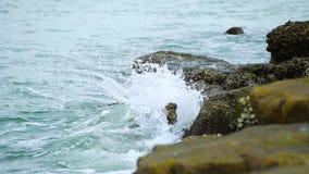Attaque bleue de vague de mer la pierre dans le clip vidéo de longueur de mouvement lent clips vidéos
