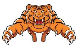 Attaque de tigre Images stock