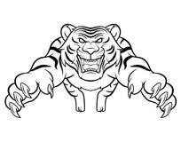 Attaque de tigre Photographie stock