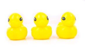 Attaque jaune du canard trois sur le fond blanc Photos libres de droits
