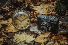 Atteggiamenti di autunno Fotografie Stock