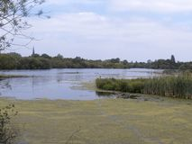 Attenborough Nature reserve, Stock Photography