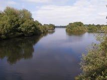 Attenborough Nature reserve, Stock Image