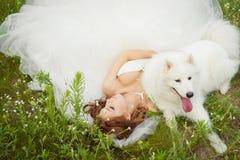 Attendez avec le Samoyed Photo stock