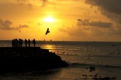 Attente du coucher du soleil Photos libres de droits