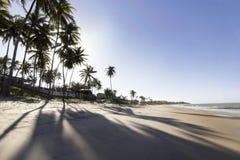 Attente du coucher du soleil sur la plage images libres de droits