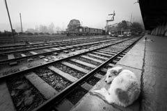Attente du train Solitude de la station images stock