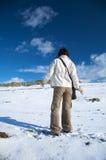 Attente sur la neige Image stock